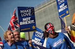 拒英國脫歐 網路連署破300萬人