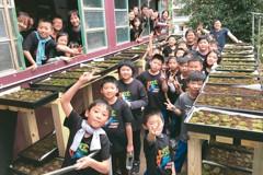 平溪創客 打造苔蘚小聚場