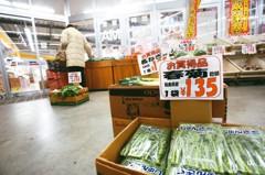 摩洛哥取消核食管制 日本將續推台灣等地開放