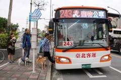 汪星人路跑 新北推期間限定「寵物公車」毛小孩免裝籠