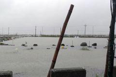 高市海洋局籲漁塭投保從速 汛期免煩惱