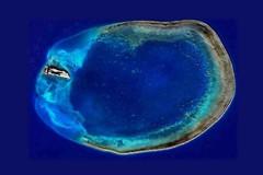 環礁美如指環… 東沙觀光喊卡 可能避掉一場生態浩劫