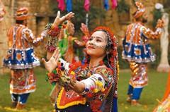 印度基金 5月績效王