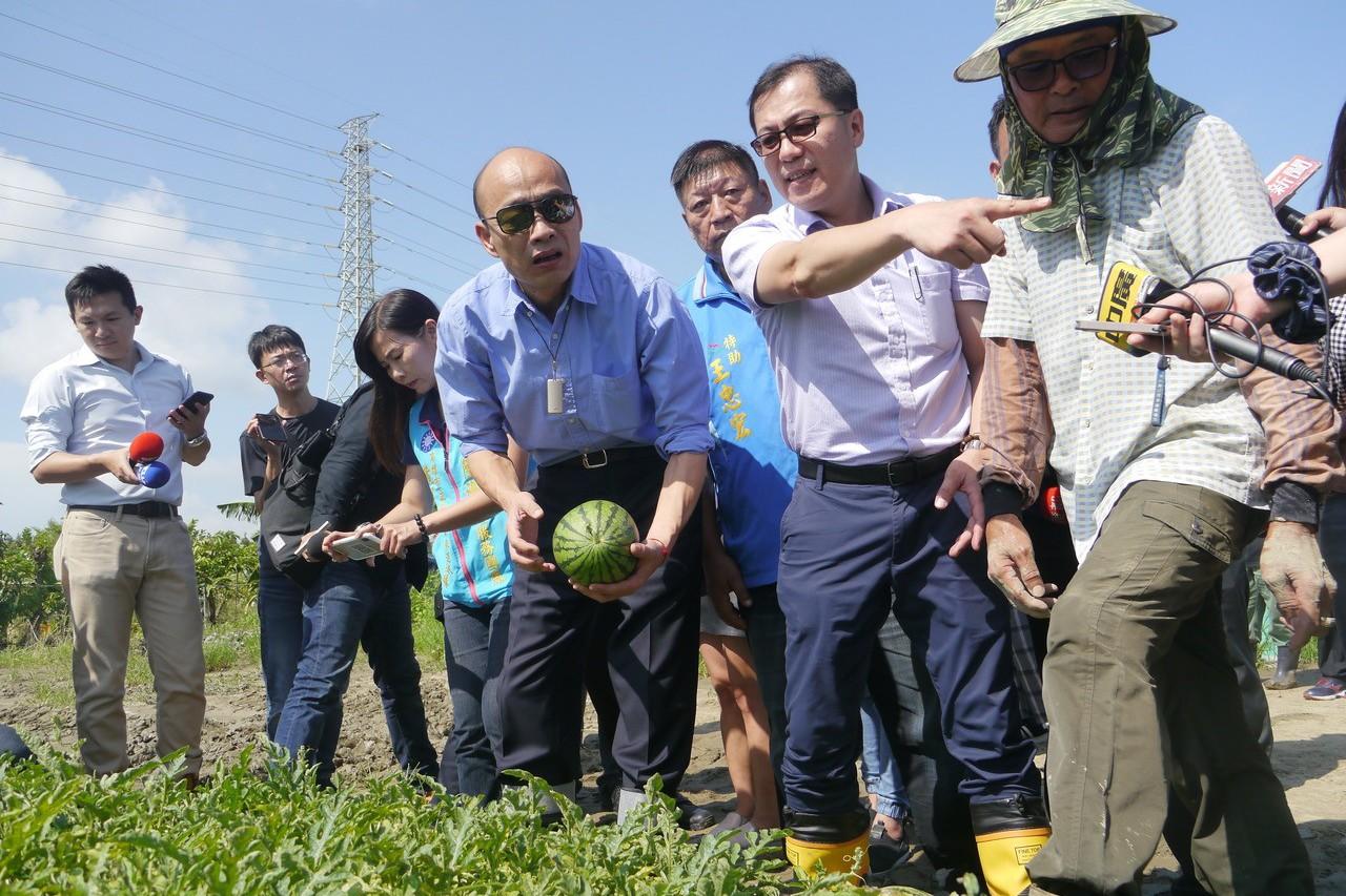農損增補貼 最多補助50%農保保費