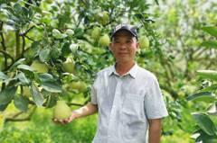 地方之光!麻豆柚農林建良獲108年度產銷履歷達人
