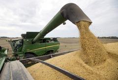回敬川普關稅威脅 傳北京已下令國企停購美國農產品