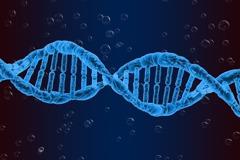 影響生理時鐘基因 與思覺失調正相關