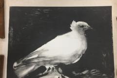 庫房「海報」竟是畢卡索版畫原作 史博館發現4真跡