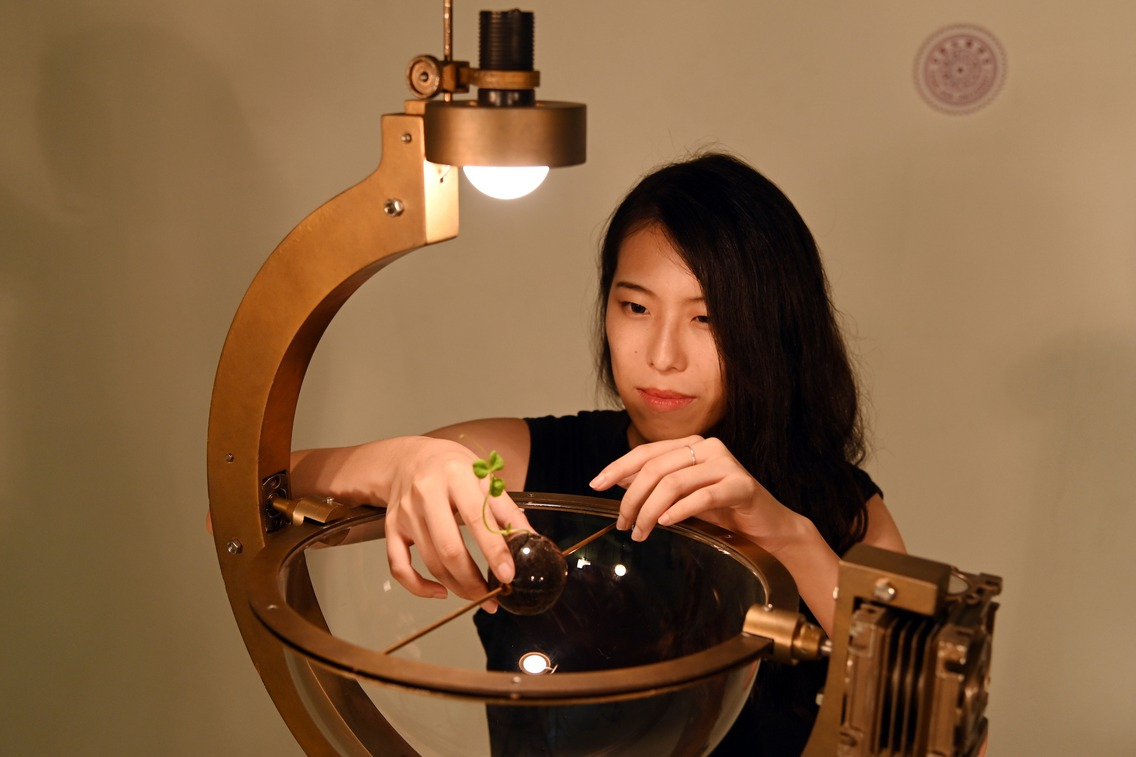 清大女碩生指揮植物長成特定形狀 登上林茲電子藝術節