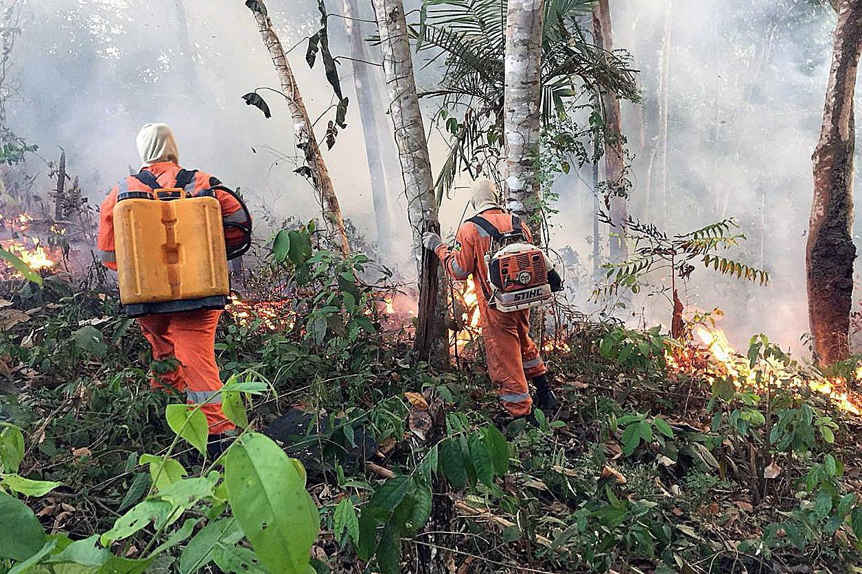 亞馬遜、印尼野火難滅 全球暖化拉警報