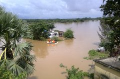 印度豪雨釀洪災 癱瘓兩邦百餘人罹難