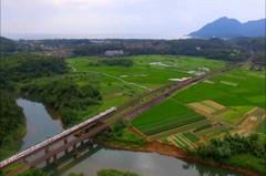 貢寮福隆新玩法 來趟田寮洋綠網小旅行了解當地生態