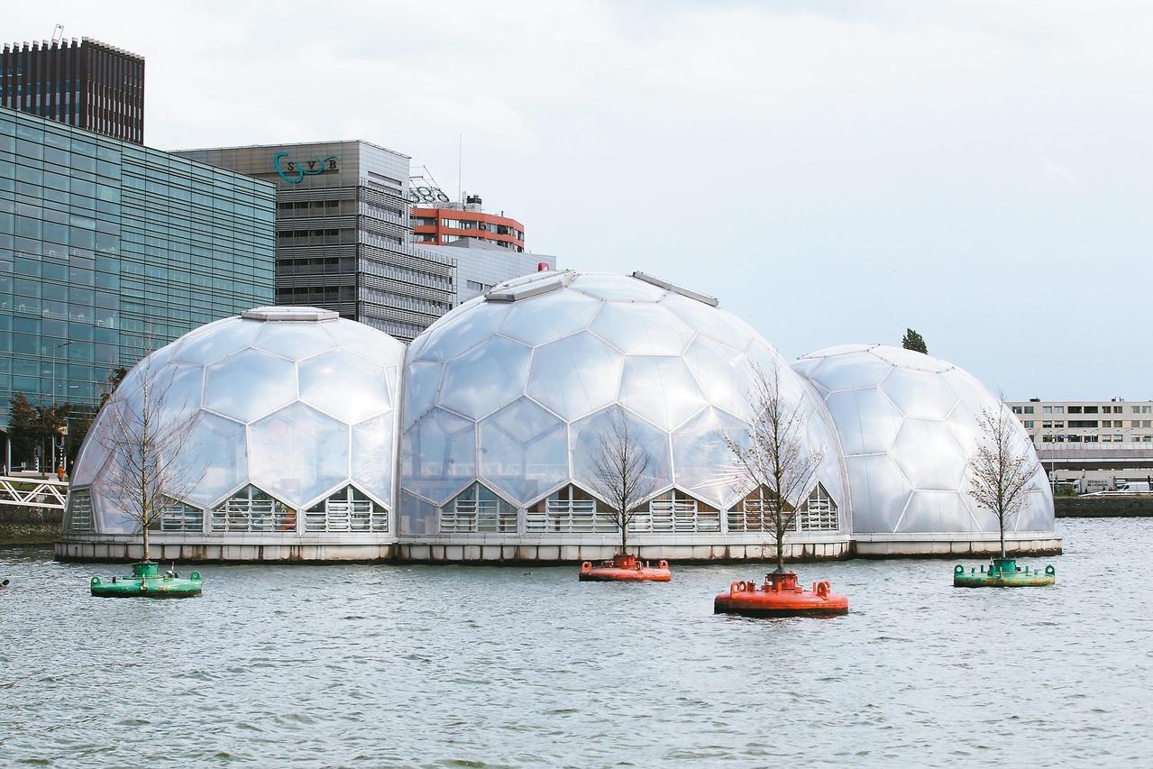 荷蘭5年力拚「氫」經濟…一輛氫能汽車213萬