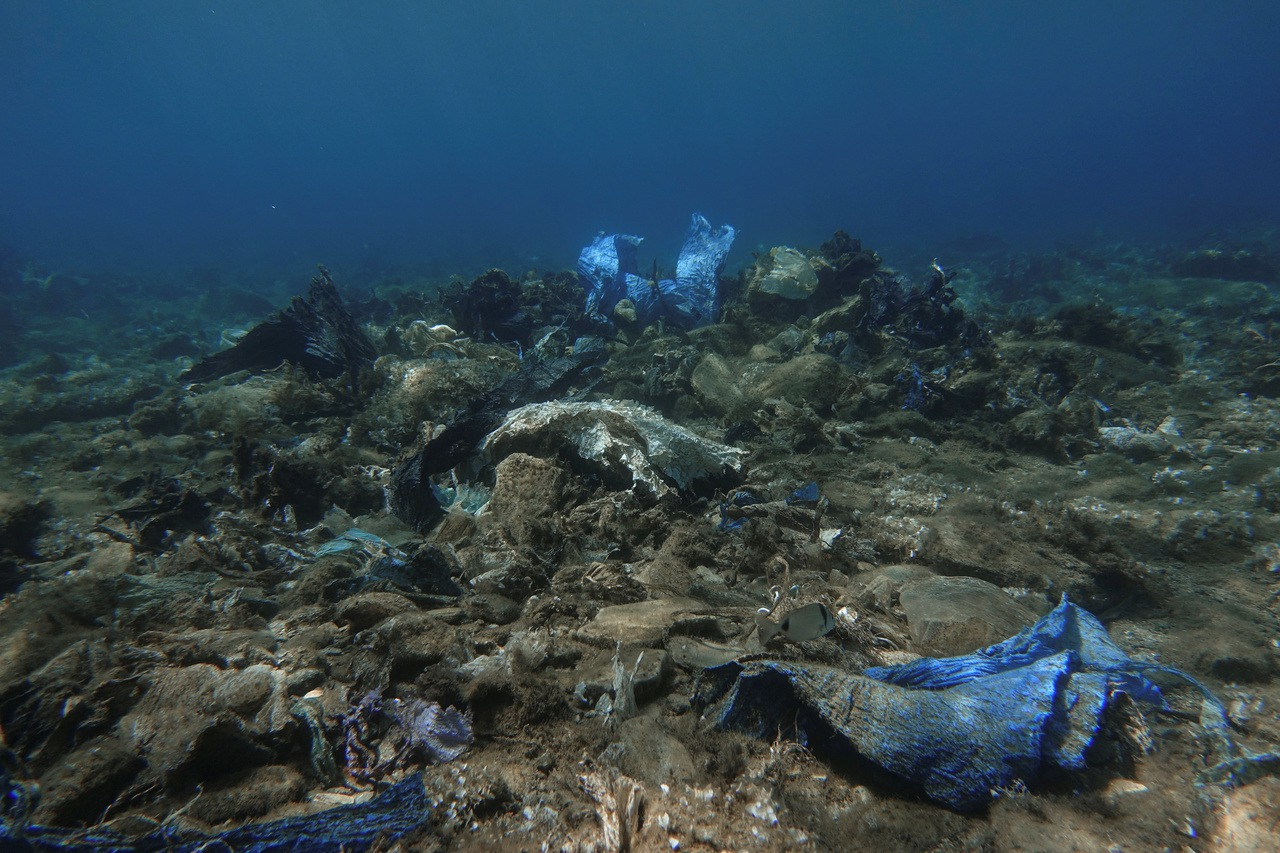 保護13萬公里海岸線 希臘明年起禁用免洗塑膠產品