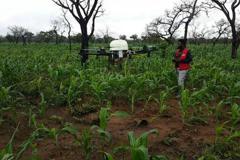 科技對抗旱災 無人機改善迦納農業