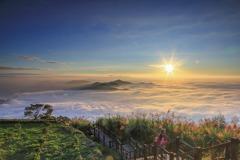 秋冬限定美景!阿里山隙頂雲海 夢幻美麗如人間仙境