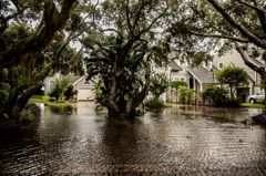 曾料見金融海嘯的他警告:海嘯恐再席捲美國房市