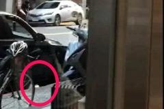 影/BMW鬧區丟便當盒!垃圾正義姐撞見斥太扯 摸鼻撿回去