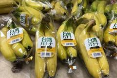 高雄香蕉外銷超越去年 明年拚破2000公噸