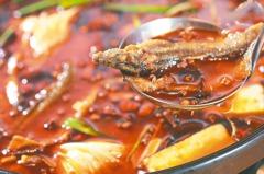 「吃火鍋太胖、不健康」是假議題 重點在於這些細節