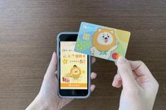 數位帳戶結合信用卡成主流 一銀iLEO信用卡最高5%回饋