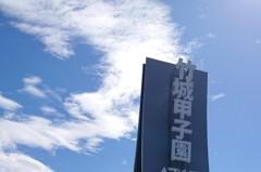 這重劃區推案量超狂 前十個月新屋供給贏過整個台北市