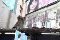 熱點風雲/北市四選區「女神」對決 看第三勢力臉色