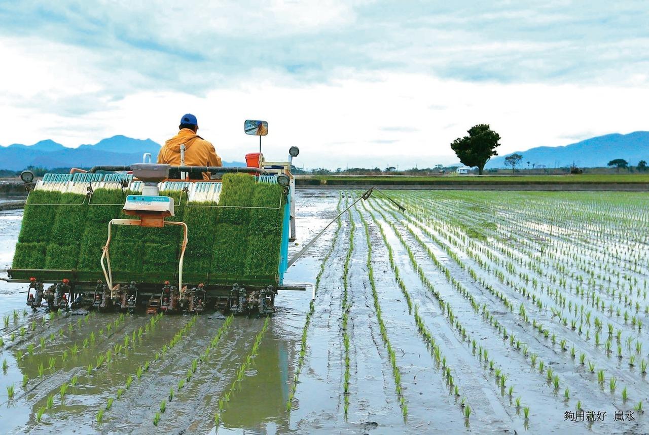 農業外展移工快來了 泰、菲先上路