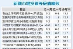 新興市場債 可逢低增持
