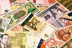 新興債基金 本月績效王