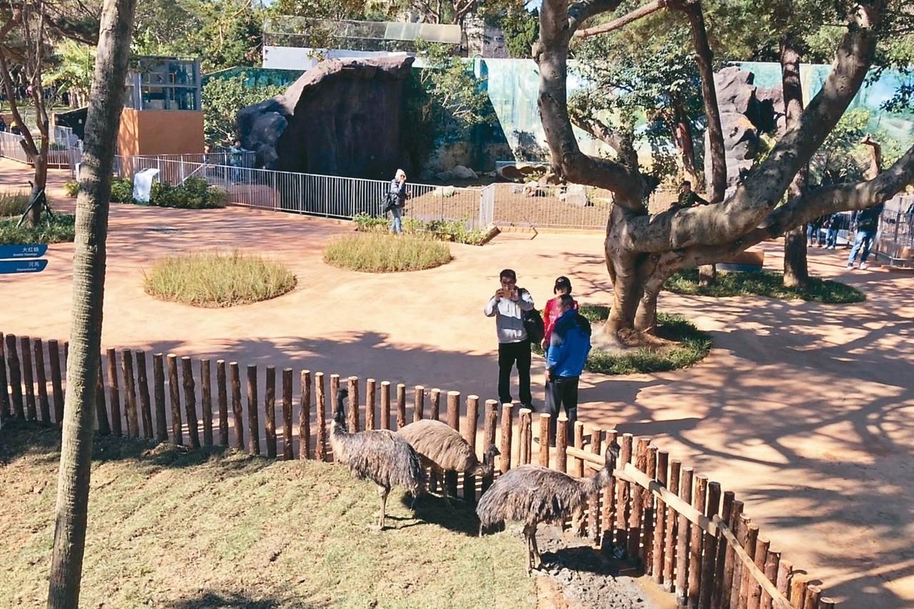 竹市動物園重開/沒鐵籠 與動物距離更近了