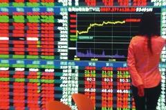 台股基金投資人去年豐收 前11月平均賺7.3萬
