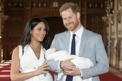 哈利夫婦退居王室幕後 黛妃之死竟是遠因