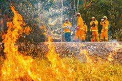 野火嚇跑旅客 澳洲今年料將損失逾900億觀光財