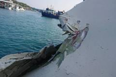 遭台東富岡港貨輪擦撞 客輪船體小部損壞