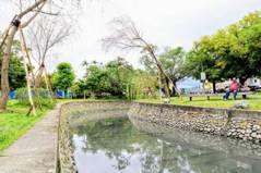 重現百年護城河垂柳好美 詩情畫意「八千代川」回來了