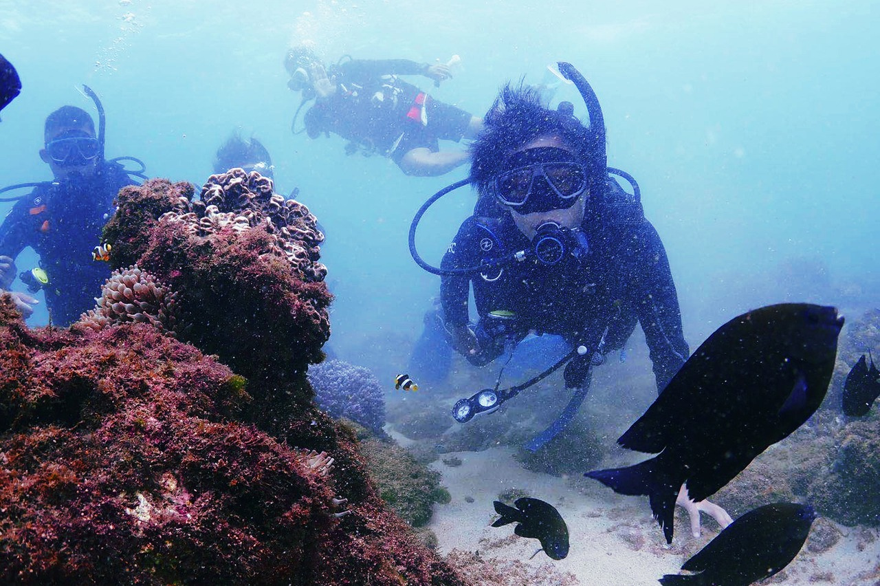 男星潛水驚遇颱風、寒流 嚇傻:覺得生命到這了!