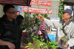 植樹節贈樹苗活動超冷清 要送千棵來30多人