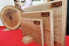 「炭之郎」進化了!柳杉不只作炭薪材 創意價更高