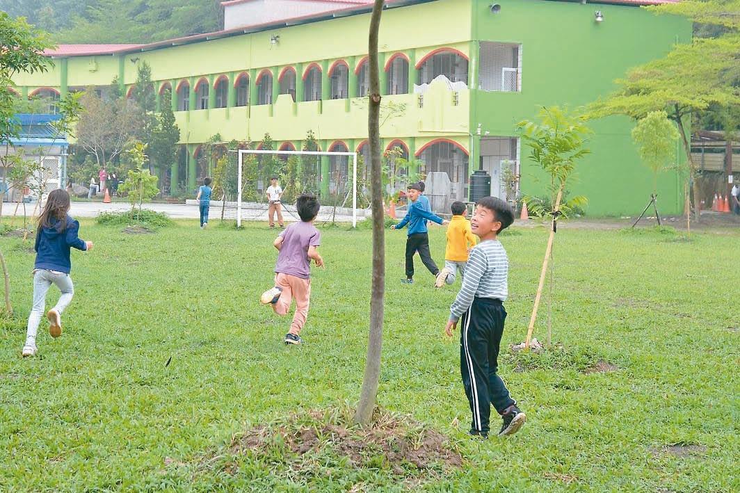 樹下的同學會…傳承責任 照顧班樹 滋養孩子