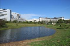 中科種樹5萬棵、綠建築21棟 取得鑽石級生態社區綠建築