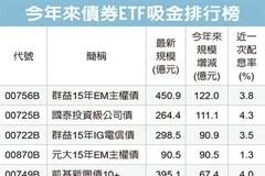 新興債ETF 冒出頭