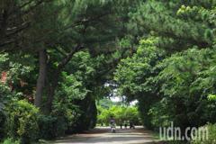 八德大湳森林公園即起閉園1年 打造生態景觀亮點