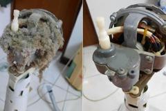 家中14年舊電扇不會轉 她拆下清潔驚見這一幕超震撼