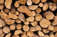 黃金石油靠邊站 木材榮登美國最熱門大宗商品