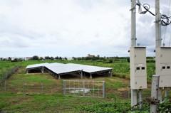 防農地破碎屏下月禁設小型光電場