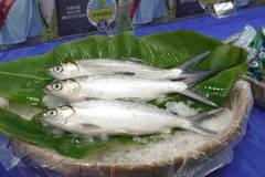 家樂福嚴選虱目魚上市 擁有產銷履歷和歐盟等級