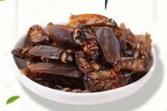 網賣「蟑螂乾」零食你敢吃嗎? 他一查古書驚呆其功效