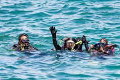 12小時700人淨海挑戰金氏世界紀錄 林右昌潛水撿海廢