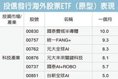 海外股ETF 三類績優